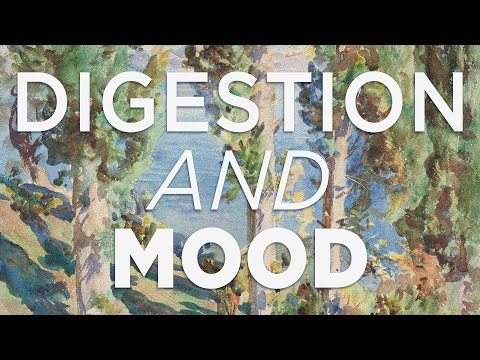 Digestion and Mood [Generative Energy #10]