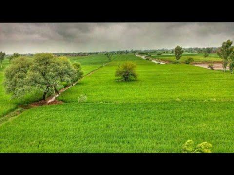 Beautiful Colors Of Sargodha Punjab Pakistan By Zaheer Hassan Vlogs