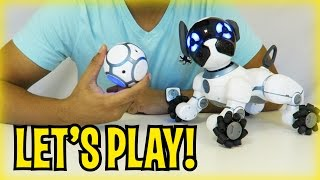 Day 2 - LET'S PLAY! CHiP Robot Dog Toy from WowWee (FULL REVIEW)