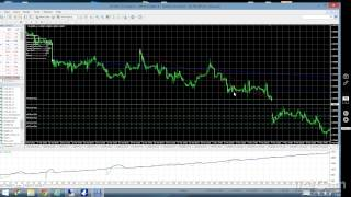 forex holy grail system ea robot make 50 70 a year on auto pilot