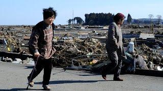 Японцы не знают – возвращаться ли им в Фукусиму (новости)