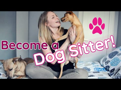 How to MAKE MONEY as a DOG SITTER