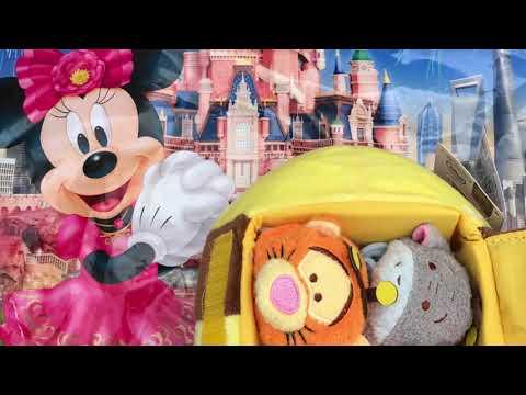 Shanghai Disney Land