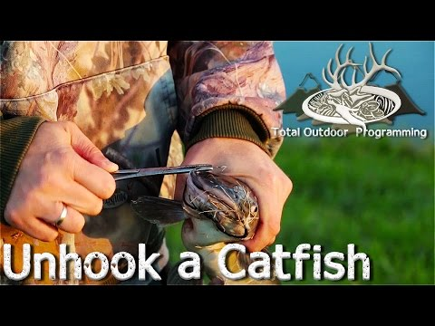 Fishing Tips: How To Take A Catfish Off Of The Hook