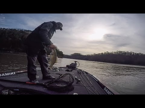Lake Cumberland | Day 3 Highlights