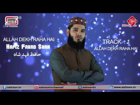 ALLAH DEKH RAHA HAI | Hafiz Fahad Shah | ALLAH DEKH RAHA HAI