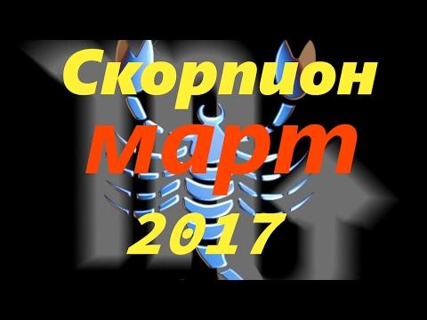 Финансовый гороскоп Скорпион. Гороскопы.