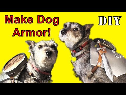 HOW TO MAKE Game Of Thrones Armor For Dogs!