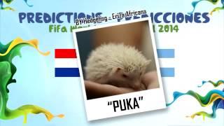 "Semifinales ""PUKA"" (Erizon Cavani) la Eriza predice HOLANDA vs ARGENTINA 2014 MUNDIAL DE FUTBOL"