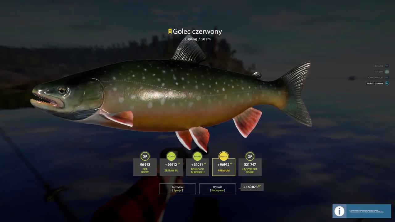 Russian Fishing 4 Ladoga lake trophys - YouTube