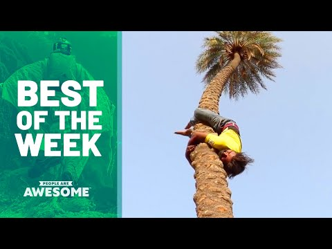 Tree Climbing, Contortion, & More | Best of the Week
