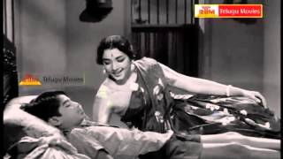 "Pachani chettu Okati - ""Telugu Movie Full Video Songs"" - Ramu(NTR,Jamuna)"