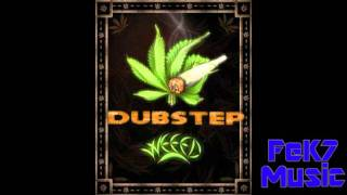 Snoop Dogg- Smoke Weed Everyday Dubstep