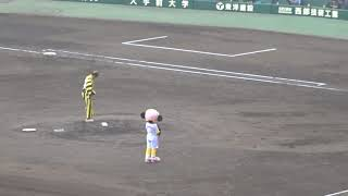 2018.05.17 阪神 - 横浜DeNA 阿部寛さんによる始球式