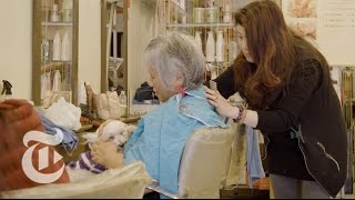 Canine Comfort During Your Cut And Color   The New York Times