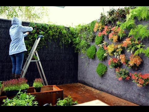 plantaci n de un jard n vertical la paisajista