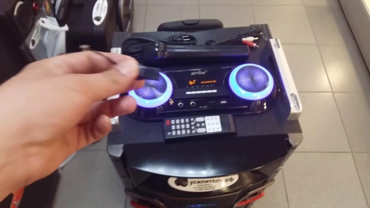 Портативная колонка с USB Zhile W-106 + микрофон для караоке