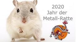 Prognose für das Jahr der Metall-Ratte - die besten Strategien für 2020