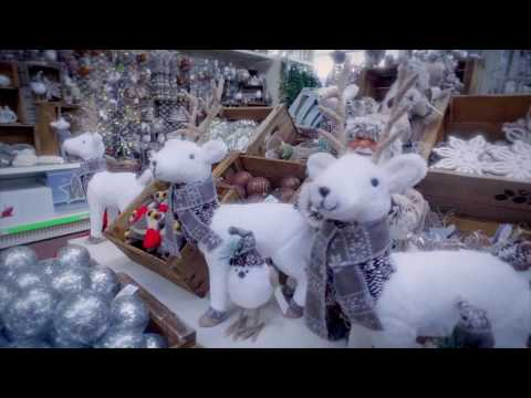 Celebrate Christmas at Squire's Garden Centres