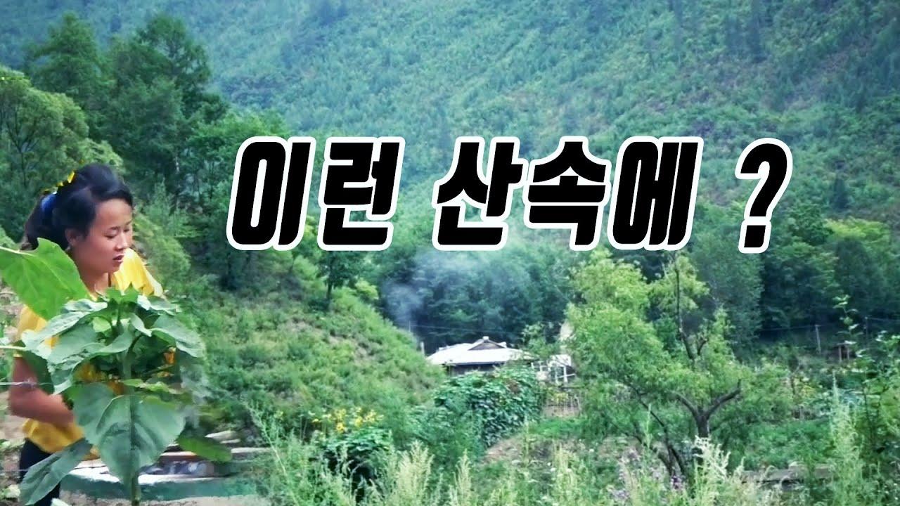 북한 자강도 산속 외딴 집에 이런 여인이 ...! [오늘의 북한]In a remote house in Jagang, North Korea, a woman like this...!