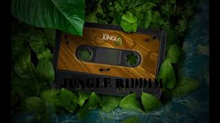 Jungle Riddim Instrumental / Version (January 2018)