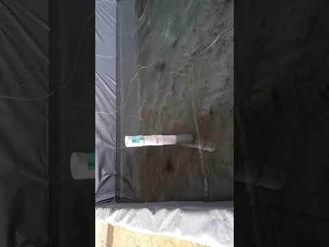 Pembenihan Lele/African Catfish (Clarias sp) dengan Clear Water Sytem Karawang (Part 4)