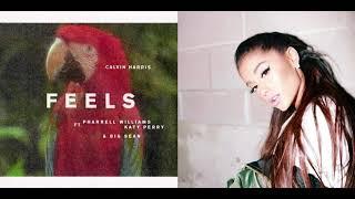 Download lagu Calvin Harris vs Ariana Grande Forever Feels ft Katy Perry Pharell Williams Big Sean MP3