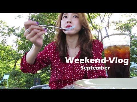【Weekend-Vlog】日韓夫婦の週末/わんこと一緒・カフェ・ペットショー・百済文化祭