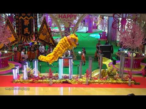 Hong Kong Chinese Lunar New Year 2018 - Lion Dance Performance  @ Taikoo Shing City Plaza (20180222)