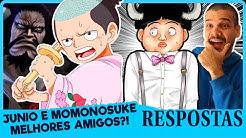 TEORIAS SOBRE JUNIO! O FILHO DE KAIDO (One Piece | Respostas)