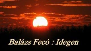 Balazs Feco - Idegen