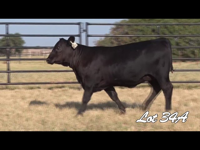 Pollard Farms Lot 34A