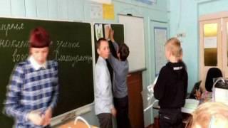 Видео фрагменты урока биологии в 5 классе