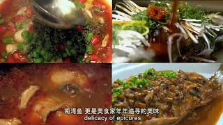 Xinyang city introduction 2017, Henan province, China 河南信阳