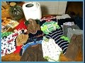 Large Family Thrift Store Haul: $3 Bread Machine, Name Brand Kids Clothing, + More!