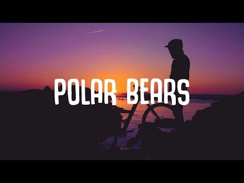 JUNG – Polar Bears