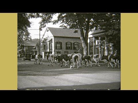 Montague Massachusetts and Neighbors - ca. 1929