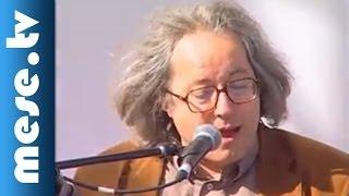 Sebő együttes és Palya Bea - Balassi Bálint: Mint sík mezőn csak egy szál fa (koncert részlet)