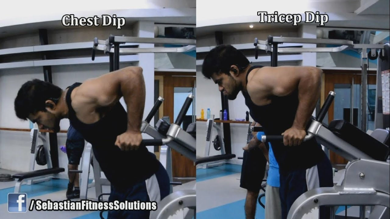Chest Dip vs Tricep Dip - Why one is Great and the other is ...
