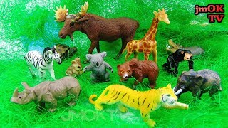 Learn Names of Animals Toys. Kids learning Animals. Entertaining Video with Animals for Children.