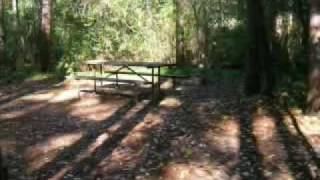 Pine Woods Campground, Loop 3, Southern Kettle Moraine State Forest