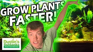 How to grow Aquarium Plants FAST- The Aerial Advantage