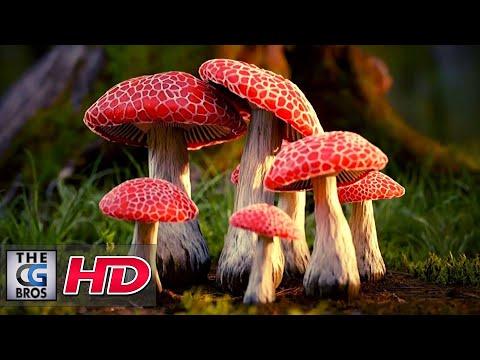 """CGI 3D Animated Short: """"Mushrooms"""" - by Paweł Grzelak   TheCGBros"""