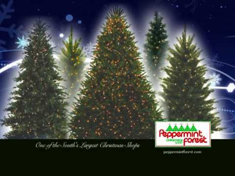 Peppermint Forest Christmas Shop - Christmas Trees - YouTube