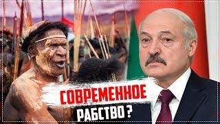 РАБота это РАБство? Декреты Лукашенко и их результаты/Общество Гомель