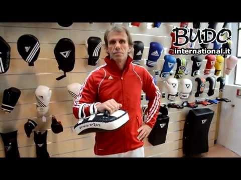 Didier Le Borgne - Pao VANDAL Power System - Budo International
