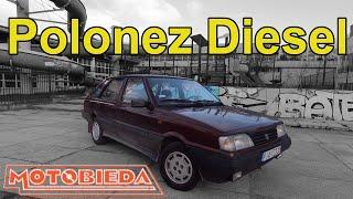 Polonez Caro 1.9 Diesel to porażka - MotoBieda