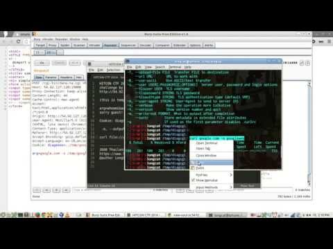 HITCON CTF 2014 - Simple Diagnostic CGI (SSRF to Remote Code Execution)
