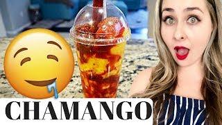 CHAMANGO | Mango Sorbet | Mexican Restaurant Style Snack