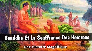 BOUDDHA Et La LIBÉRATION De La SOUFFRANCE ✨ L'histoire De Bouddha Et Du  Tamarinier - YouTube